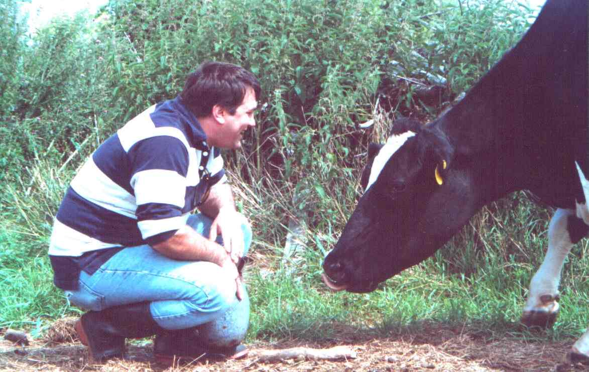 Here I am with a Holstein called (AS)400